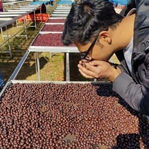 FIRSTCRACK Kaffeeröster Berlin - Su Nandar Linn, Myanmar